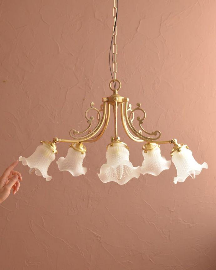シャンデリア 照明・ライティング アンティーク風のガラスシェード付きシャンデリア(5灯・電球なし) (cr-548-g)