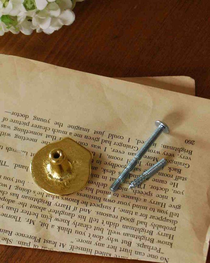 取っ手・ハンドル 住宅用パーツ 毎日使う持ち手をちょっとおしゃれに・・・真鍮製の取っ手(シェル)。取り付けもカンタン!後ろからナットで留めれば取っ手に、ビスを取り付ければフックになります。(u-535)