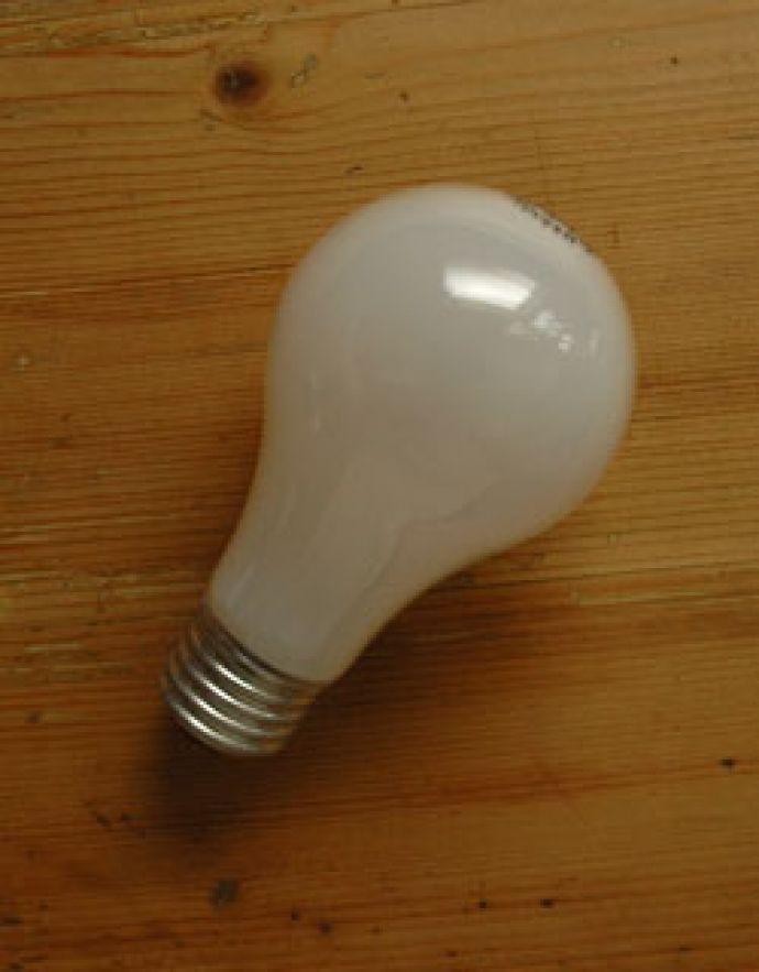 x-780-z ベンジャミンランプの電球