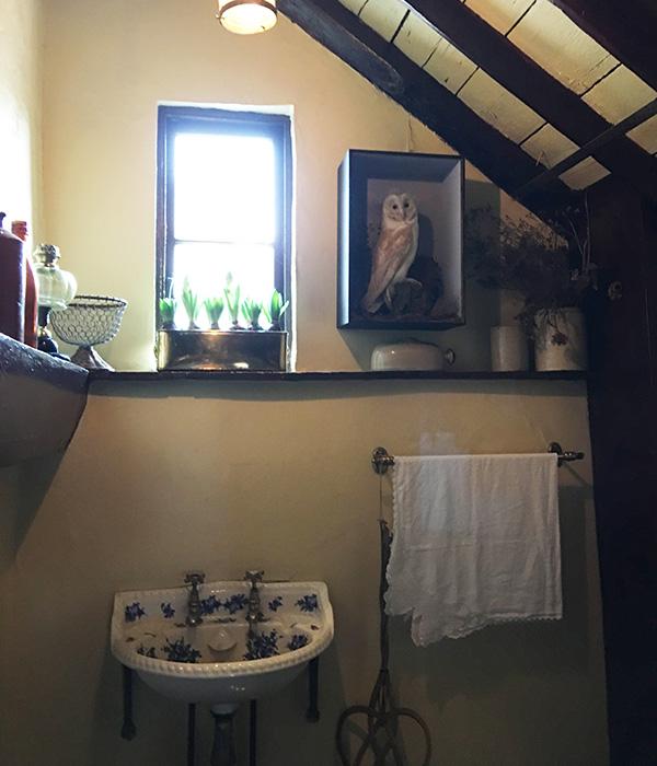 3階ハドソン夫人の部屋 サニタリー