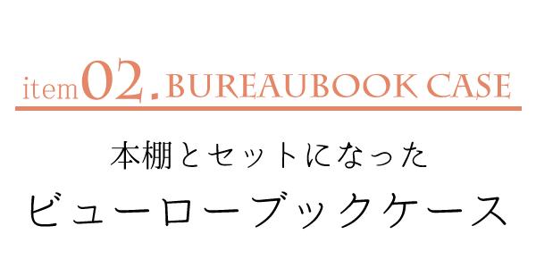 本棚とセットになったビューローブックケースSP