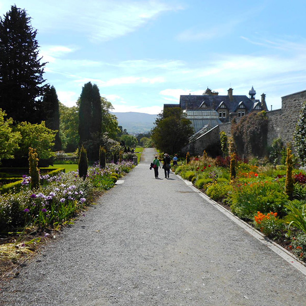 英国のボーダーガーデン、ボドナント・ガーデン