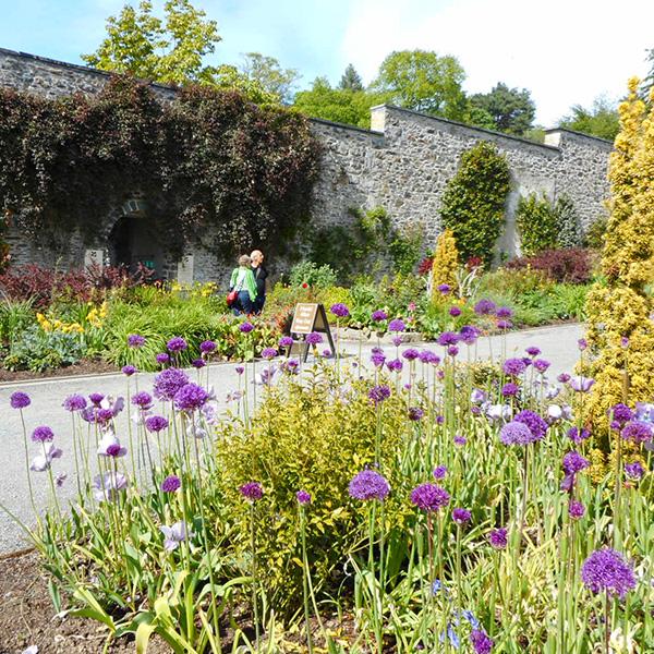 英国、北ウェールズのイングリッシュガーデン、ボドナント・ガーデン