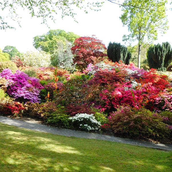 英国Wales、ボドナント・ガーデン