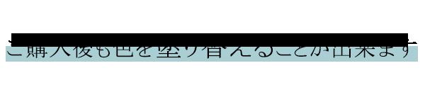 Handleロイドルームの色(塗り替え)