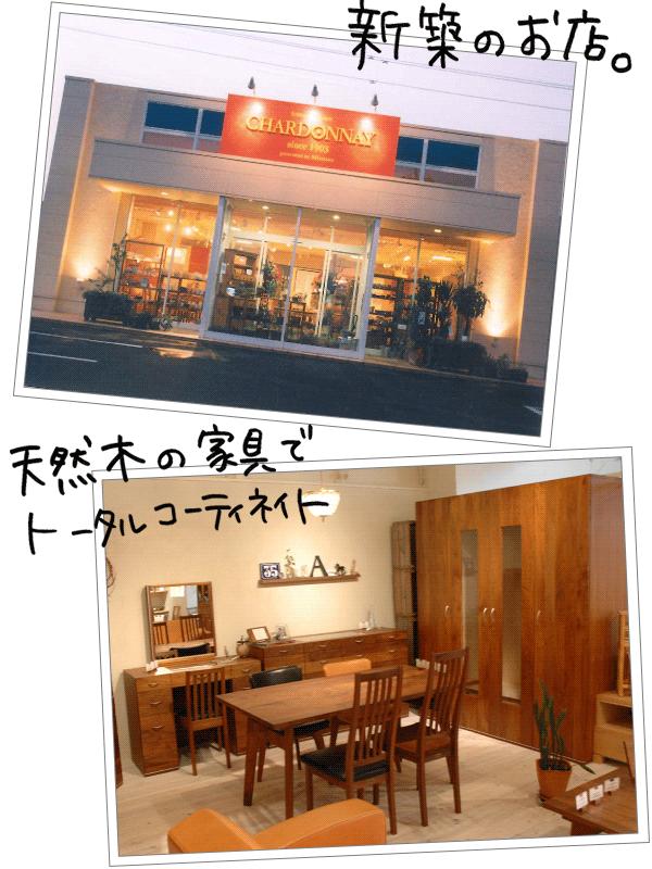 新築のお店。天然木の家具でトータルコーディネイト