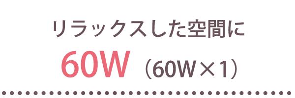 60W(60W×1)